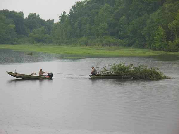 Hauling trees for Lake Gayle structure, July 2014