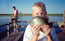 Hudson Wilson with a nice coppernose bream