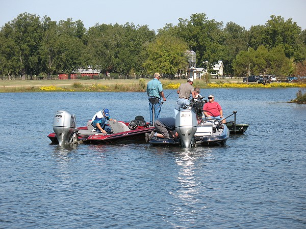 Pondtoon for Fishing channel on dish