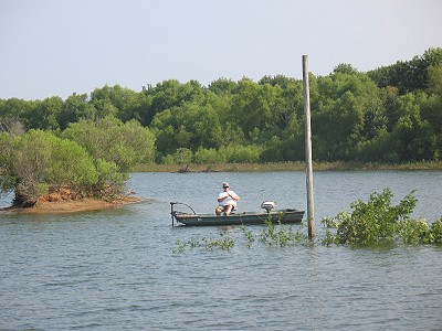 Trees tied to poles in Donavan ... Rod Bamberg fishing, July, 2014