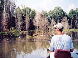 Chad Wilson fishing Swamp Lake